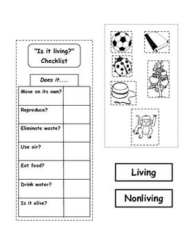 living nonliving and basic needs lapbook science living nonliving basic needs 2nd grade. Black Bedroom Furniture Sets. Home Design Ideas