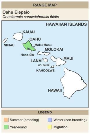 CERange Map for Oahu Elepaio