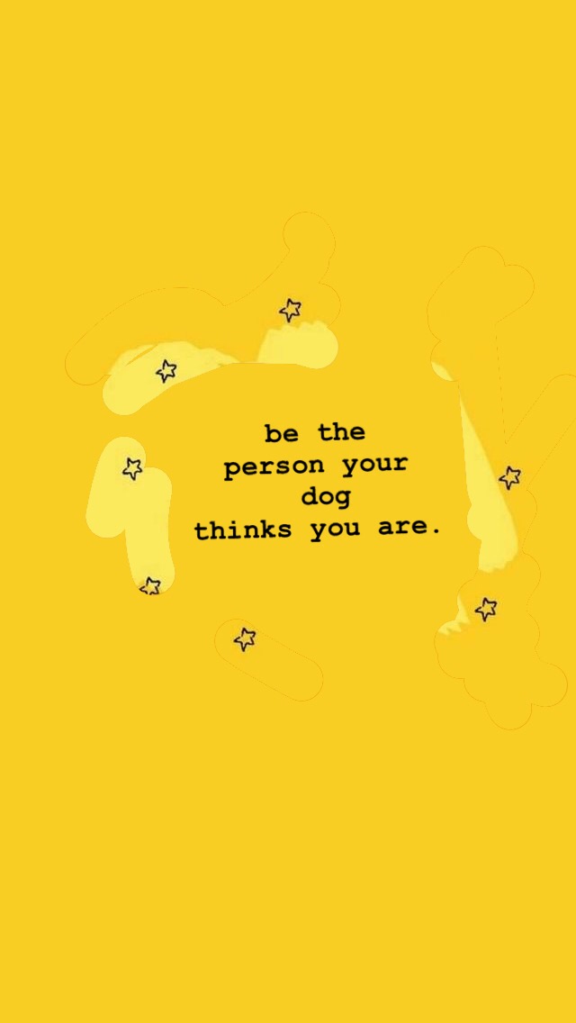 Be The Person Your Dog Thinks You Are Yellow Quotes Cute Wallpapers Quotes Pretty Quotes