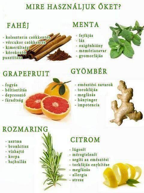 fogyni gyógynövények természetesen)