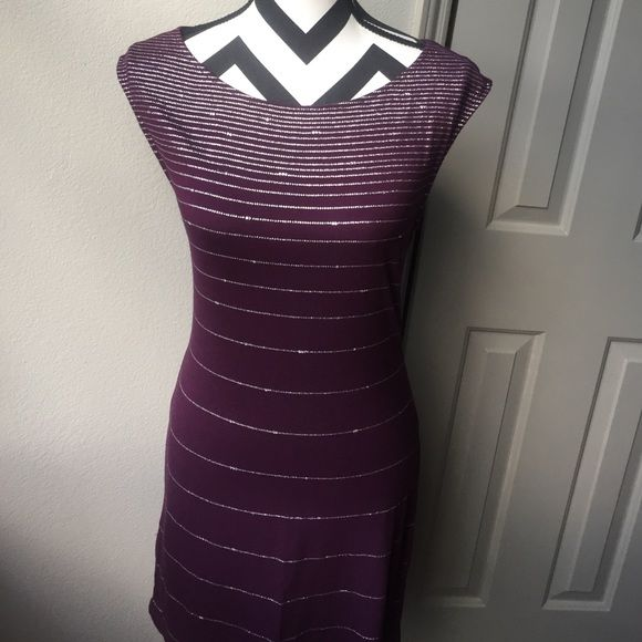 Plum colored dress. Plum colored dress. With silver lines on the front. Never been worn. Length of dress is 33 1/2 inches long Express Dresses Mini