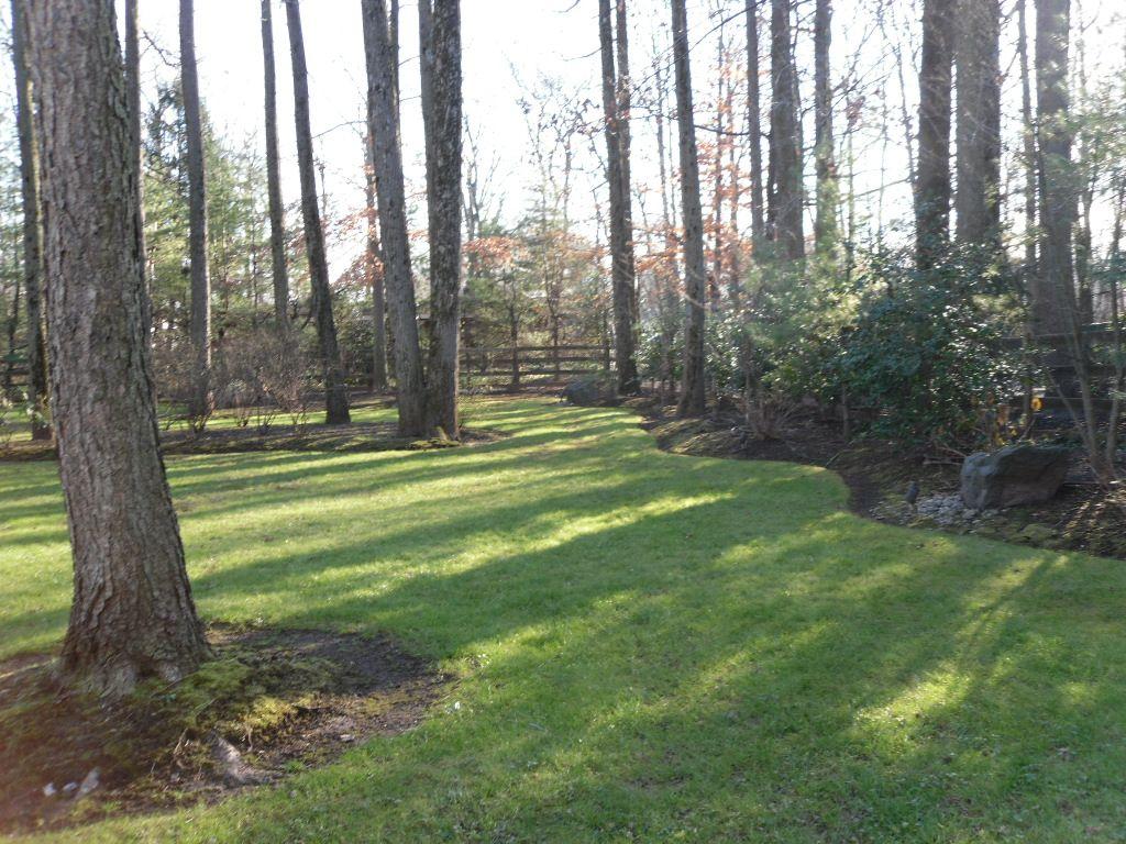 Park Like Backyard Acreage Landscaping Landscape Design Backyard
