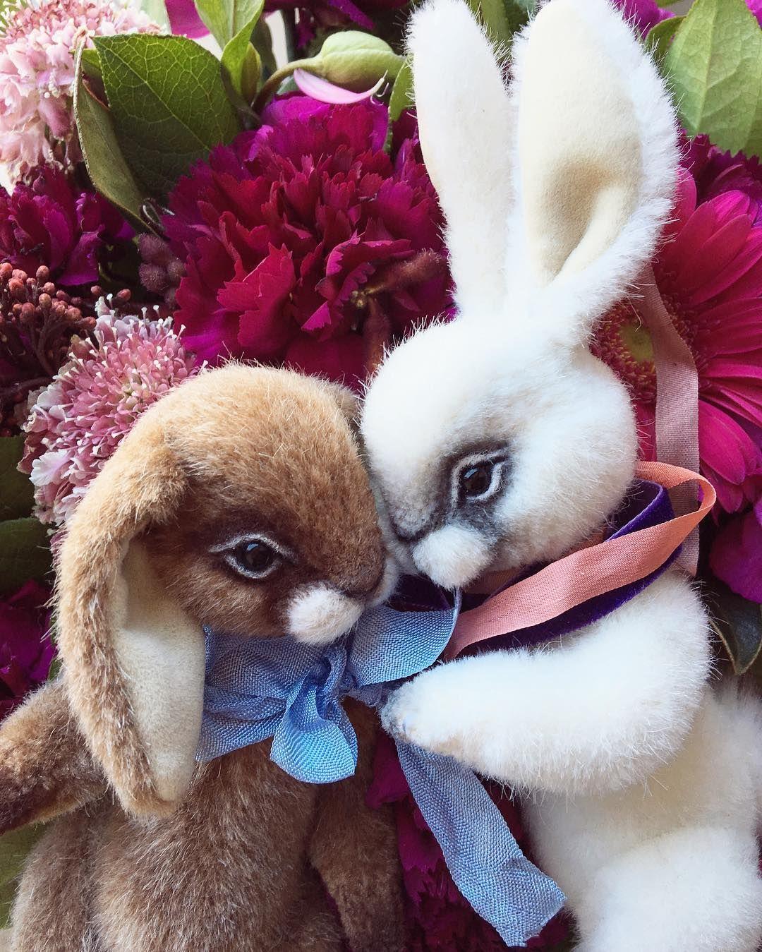 картинки любимой заяц с цветами