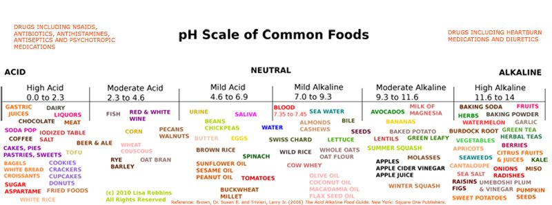 Free Tools at TheGoodWitchca - pH Chart Download Alkaline Diet - ph chart
