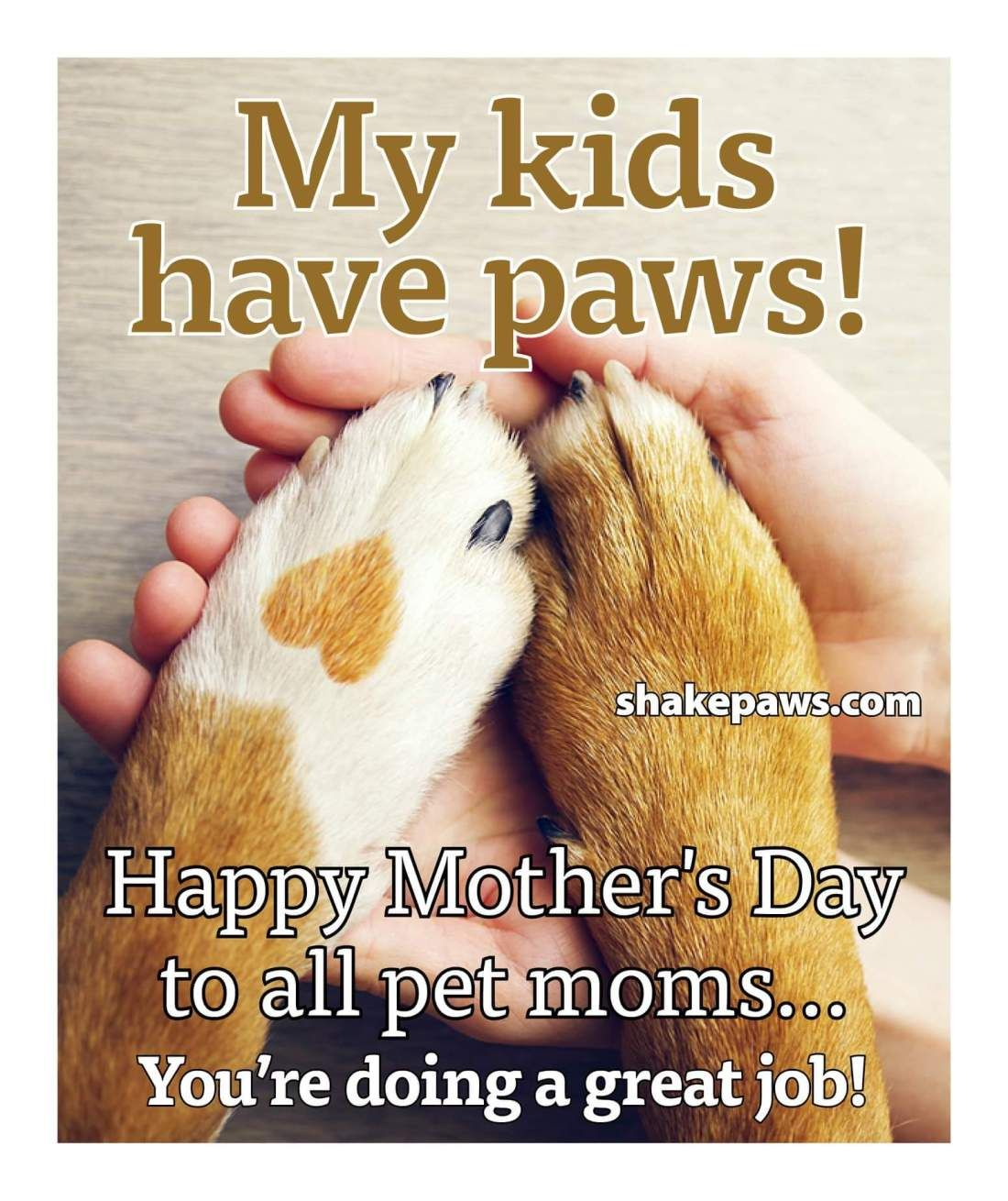 Happy Mother S Day To All Pet Moms Dog Mothers Day Happy Mom Day Pet Mom
