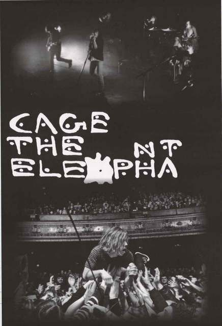 Cage The Elephant Iphone Wallpaper