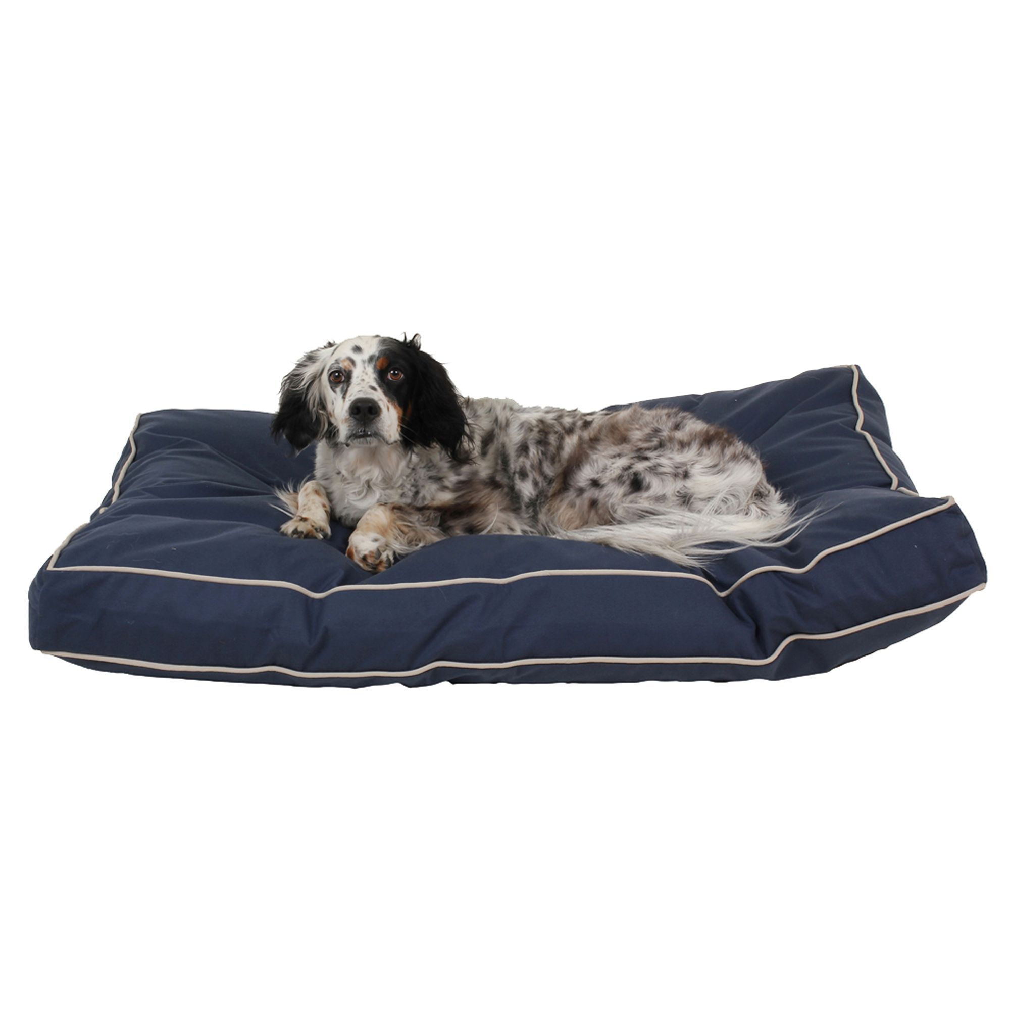 Carolina Pet Classic Canvas Rectangle Personalized Pet Bed