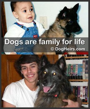 Dogheirs Where Dogs Are Family Dogs And Kids Dog Help Family