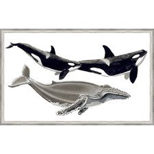 Ashton Wall Décor LLC Coastal \'Whale Display IV\' Framed Painting ...