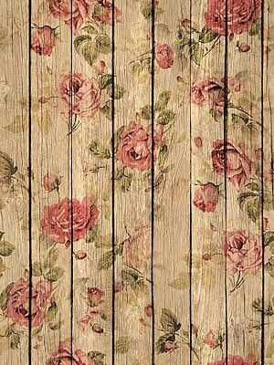 Shabby Chic Wallpaper Rose Beautiful Background Photography Backgrounds Phone Wallpapers Vintage Search Food