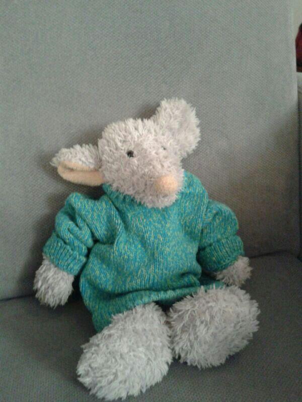 Zelfgebreide trui voor muis