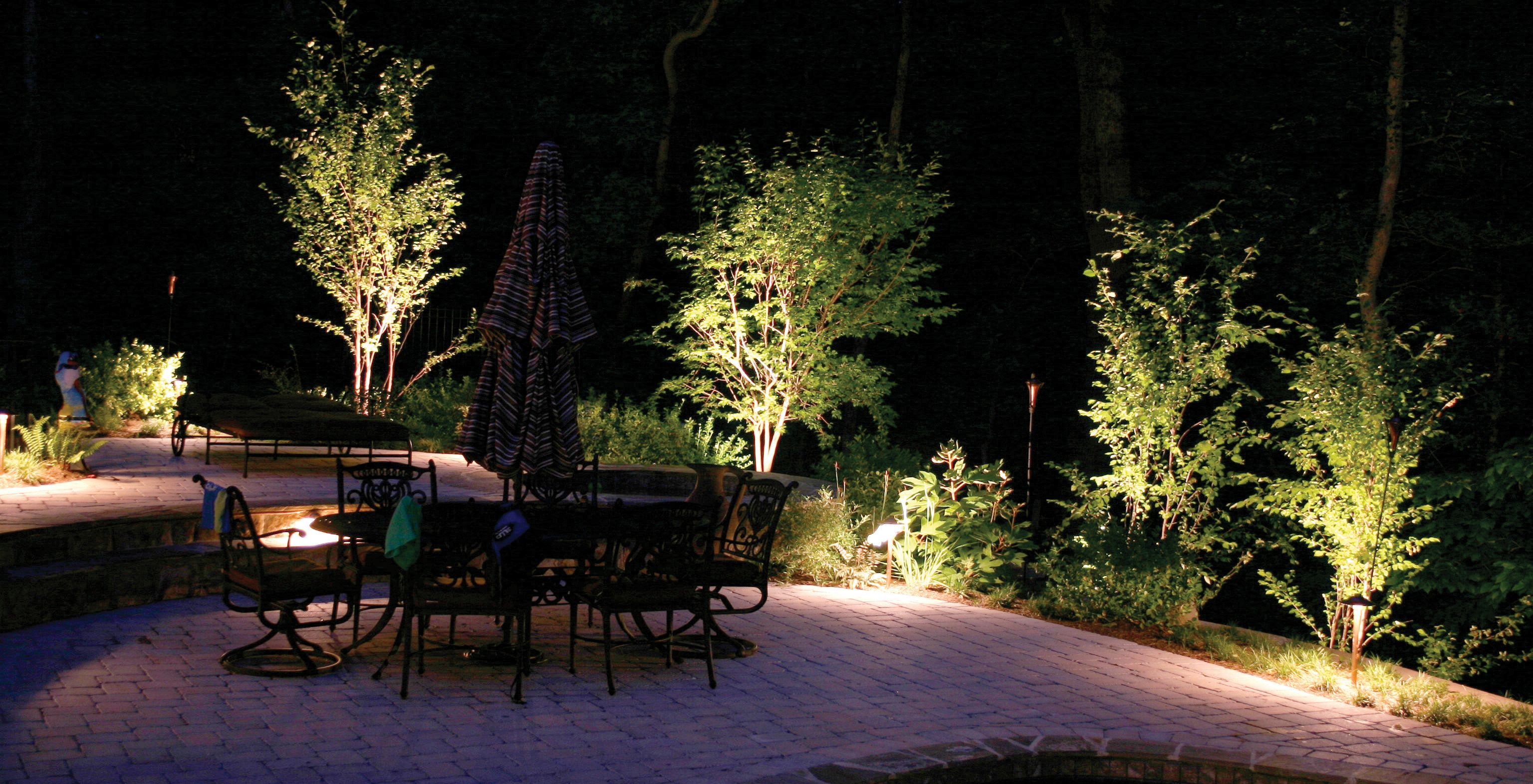 Garden Lighting And Tree In Greater Seattle