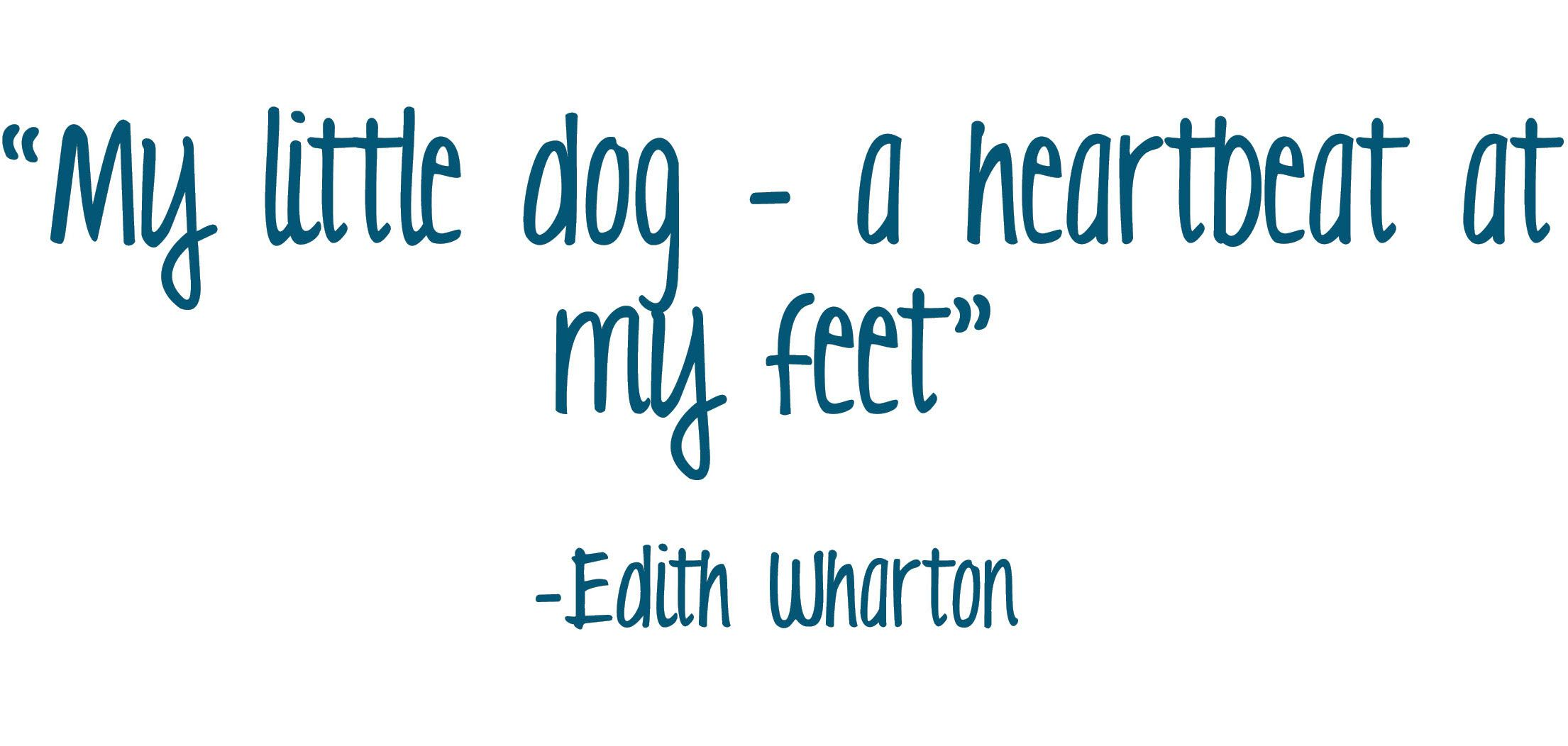 My Little Dog A Heartbeat At My Feet Edith Wharton Cthleedap
