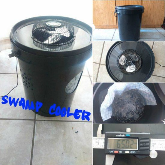 Diy Swamp Cooler To Keep Cool In Hot Weather Swamp Cooler Diy Swamp Cooler Homemade Swamp Cooler