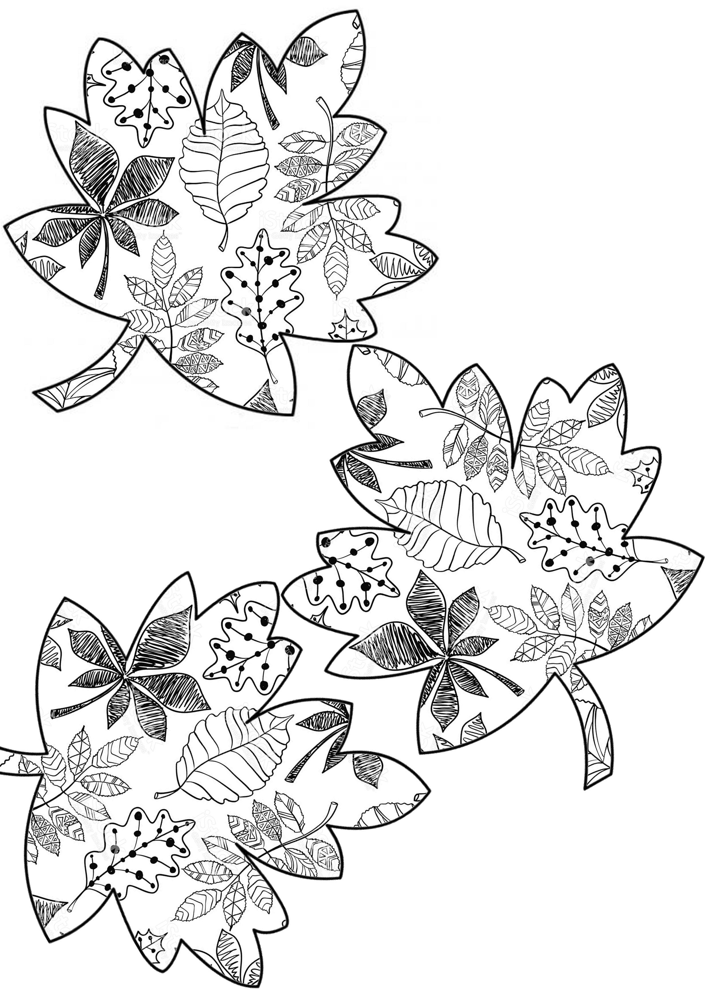Pin de semra sevil en sonbahar | Pinterest | Otoño