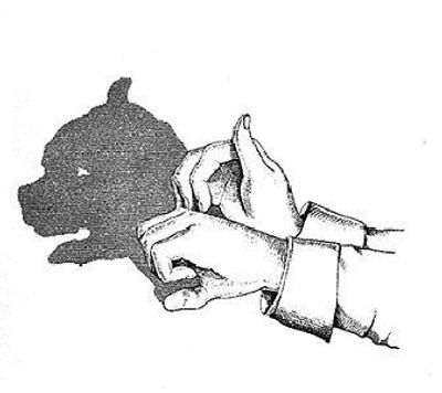 Discover The Magic of Hand Shadow Illusions