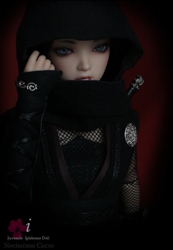 Beautiful ninja doll!!   Ball jointed Doll Total Shop :::Iplehouse.net::