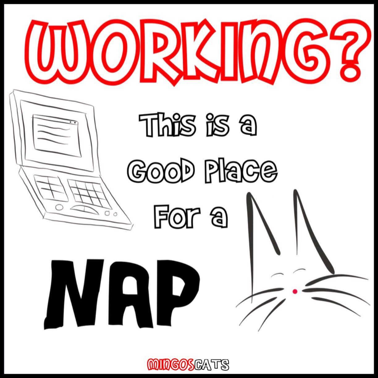 Working?   #cats #gatos #gatetes #catslovers #catlover #love #amor #meow #miau #work #trabajo