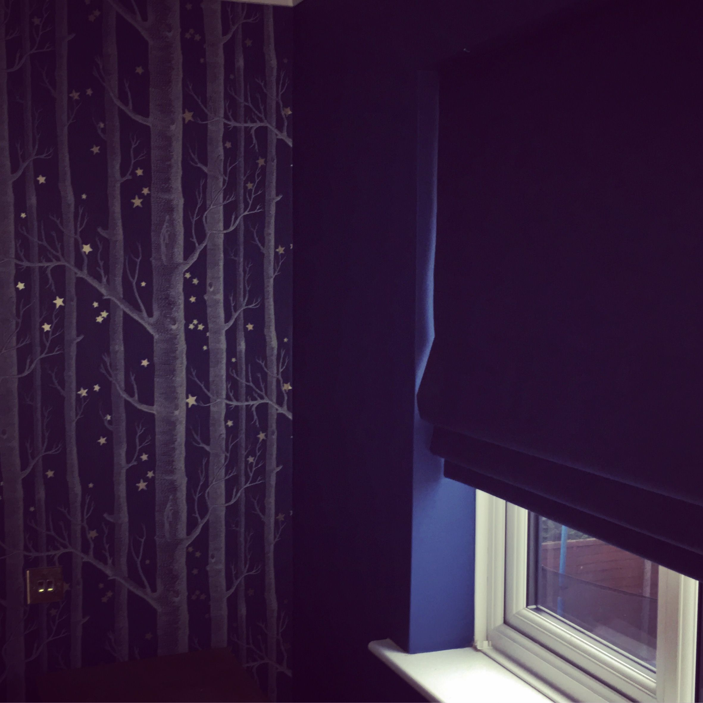 Navy Blue Bedroom Using The Cole And Son Woods And Stars