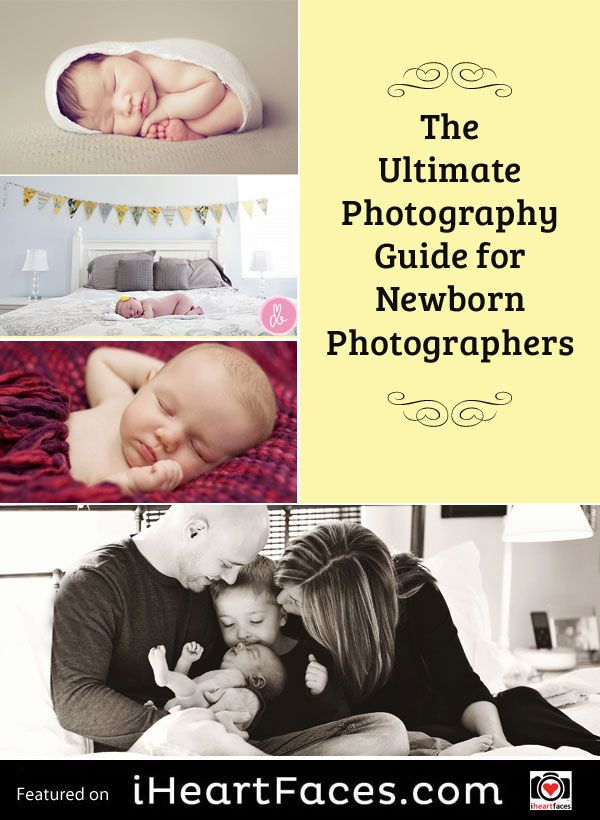 The ultimate photography guide for newborn photographers via iheartfaces com