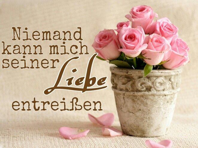 Gottes Liebe.   Sprüche   Bible verses, Bible prayers und ...