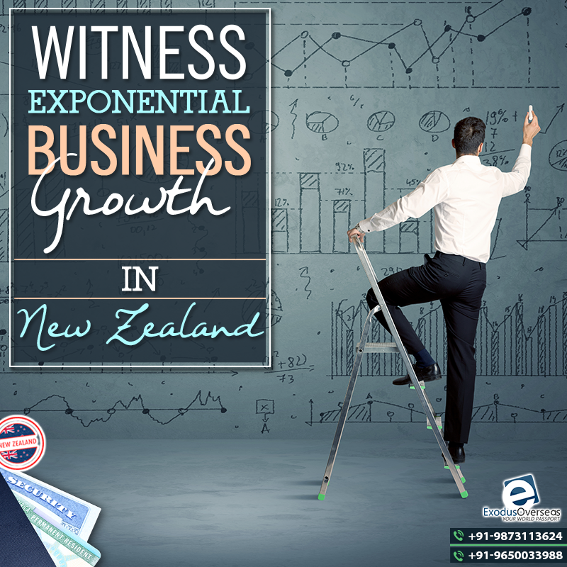 Invest in your business in New Zealand and witness its