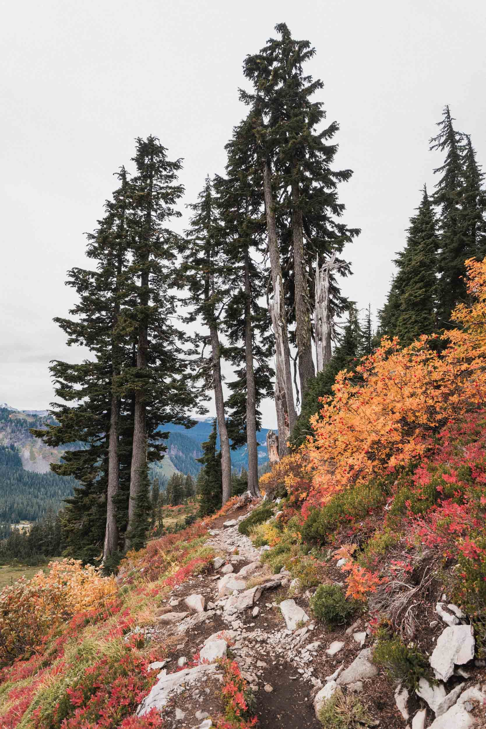 Chain Lakes Loop Mt. Baker Hike Washington in 2019