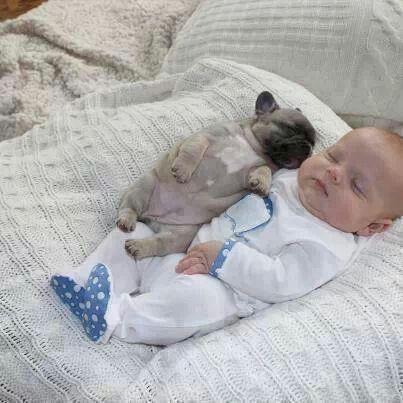 Two cute things