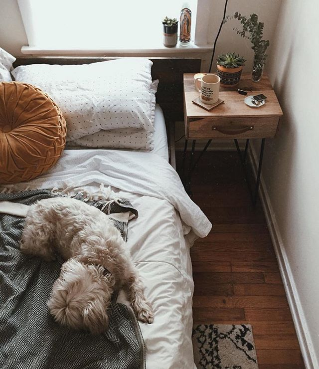 This Feels Right, @prettylittlefawn. #UOHome