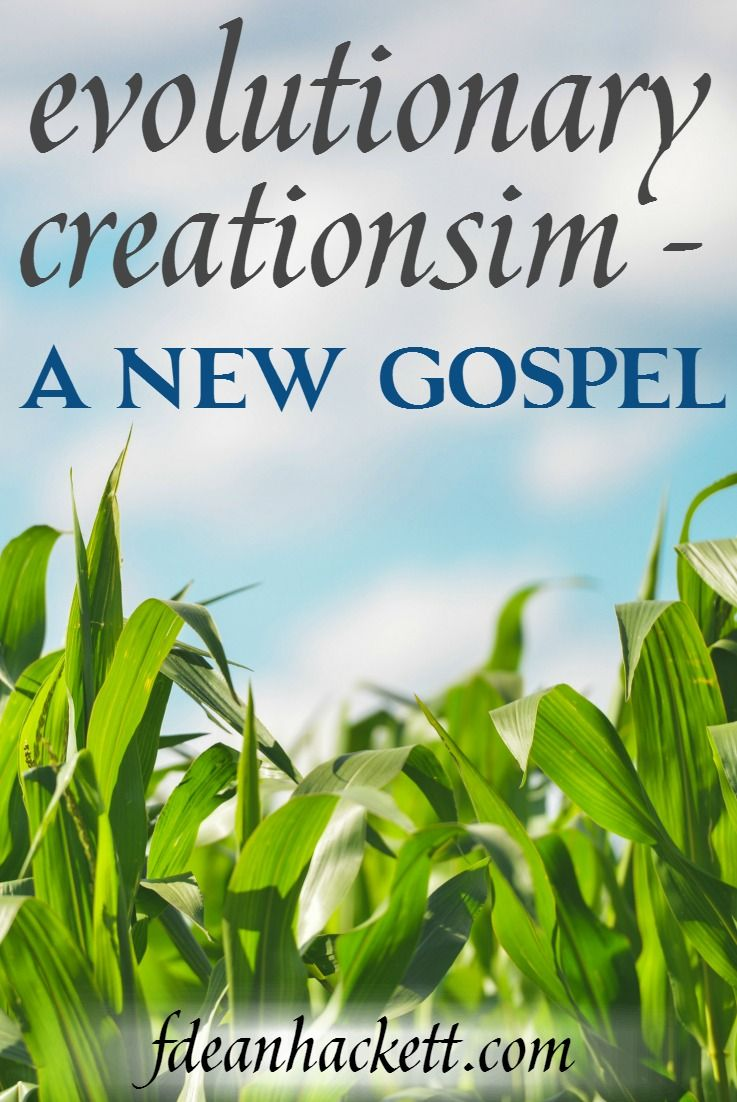 Evolutionary creationism is being taught in churches today, but it contradicts what the Bible teaches in Genesis. Here is why it is a new gospel.