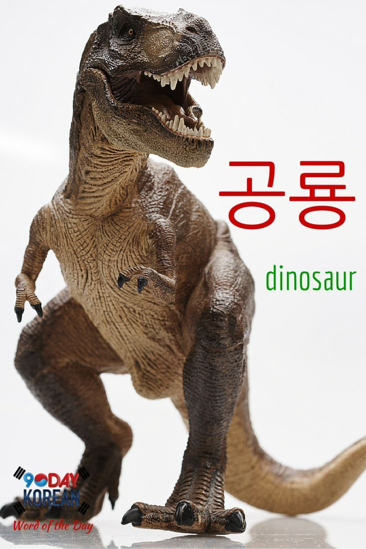 "Here's today's Korean word of the day!  The word  means dinosaur.""  If you cant read this word yet, download our free EPIC Korean reading guide by clicking the link in our bio and well teach you in 60 minutes.  Repin if this was helpful!"