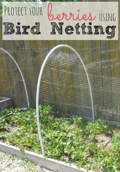 Sitemap Bird Netting Garden Netting Fruit Garden