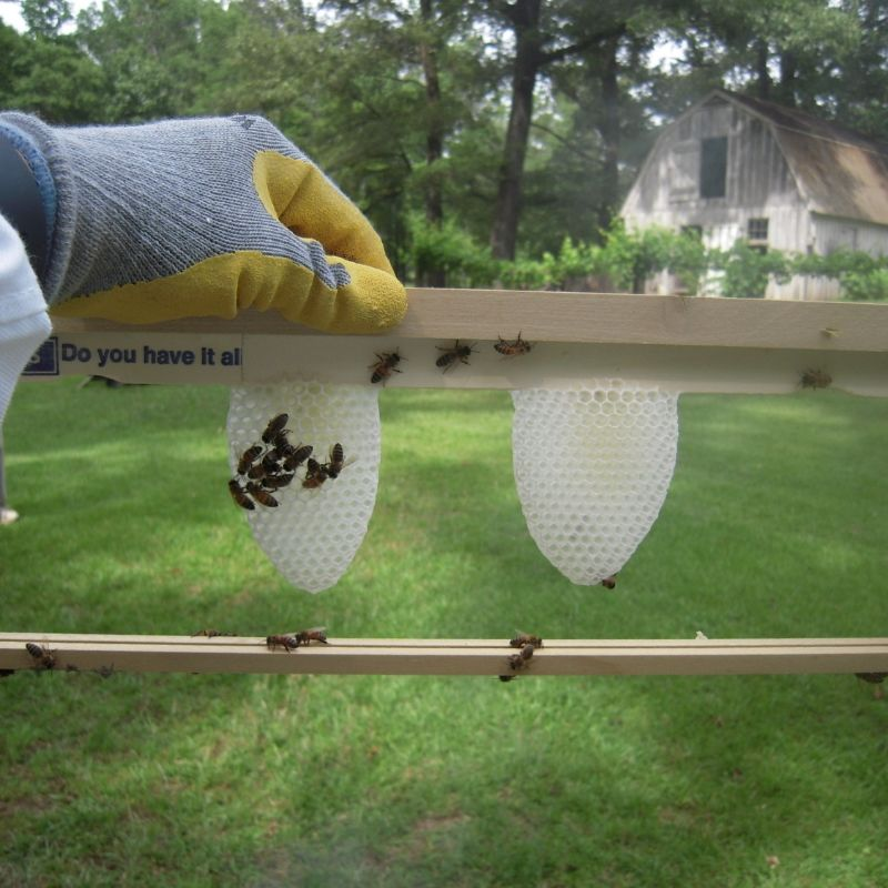 Building and Using Foundationless Frames | Home on the Range