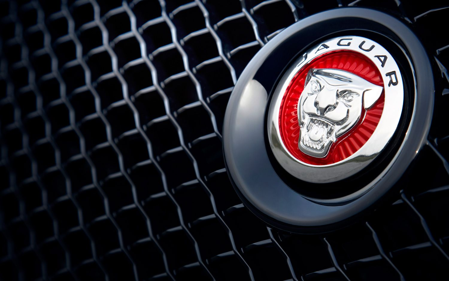 Jaguar symbol red buscar con google cars pinterest cars jaguar symbol red buscar con google biocorpaavc Gallery