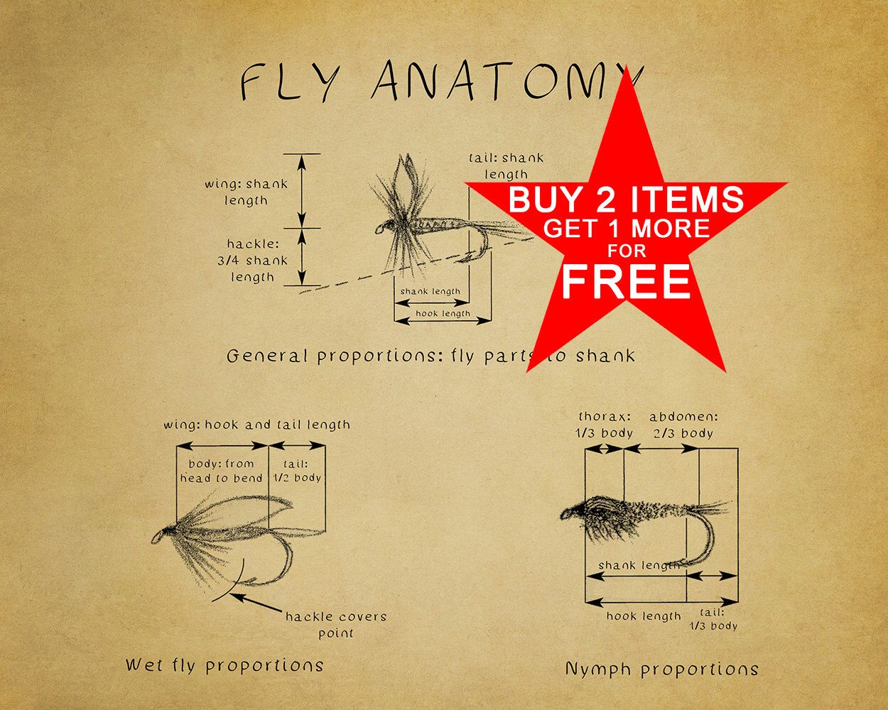 Fly Fishing Poster - Fly Tying Diagram - Fly Fishing Print - Chart ...