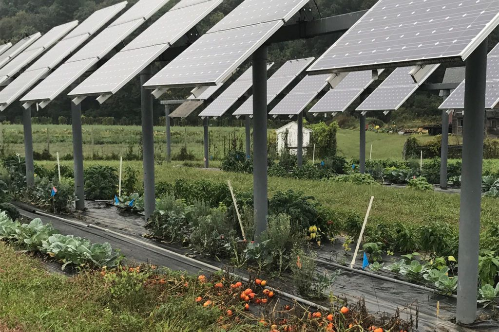 Jan 23 Green Energy News Solar installation, Solar