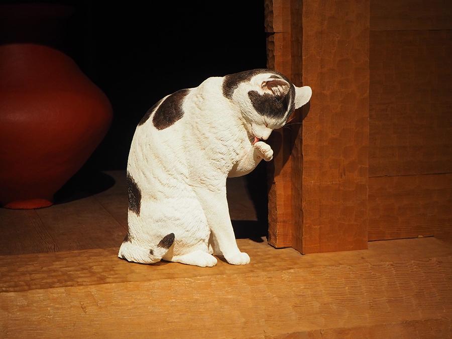 猫はいつから日本にいるの 伊藤隆太郎 論座 朝日新聞社の言論サイト 猫 考古学 弥生時代