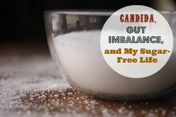 Sugar Free Lifestyle How My Life Without Sugar Began With