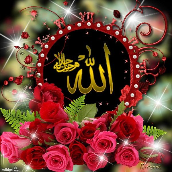 A Rose For You Islamic Images Allah Wallpaper Islamic Pictures
