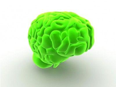 Green Brain Free Template Presentation Background Medical - brain powerpoint template