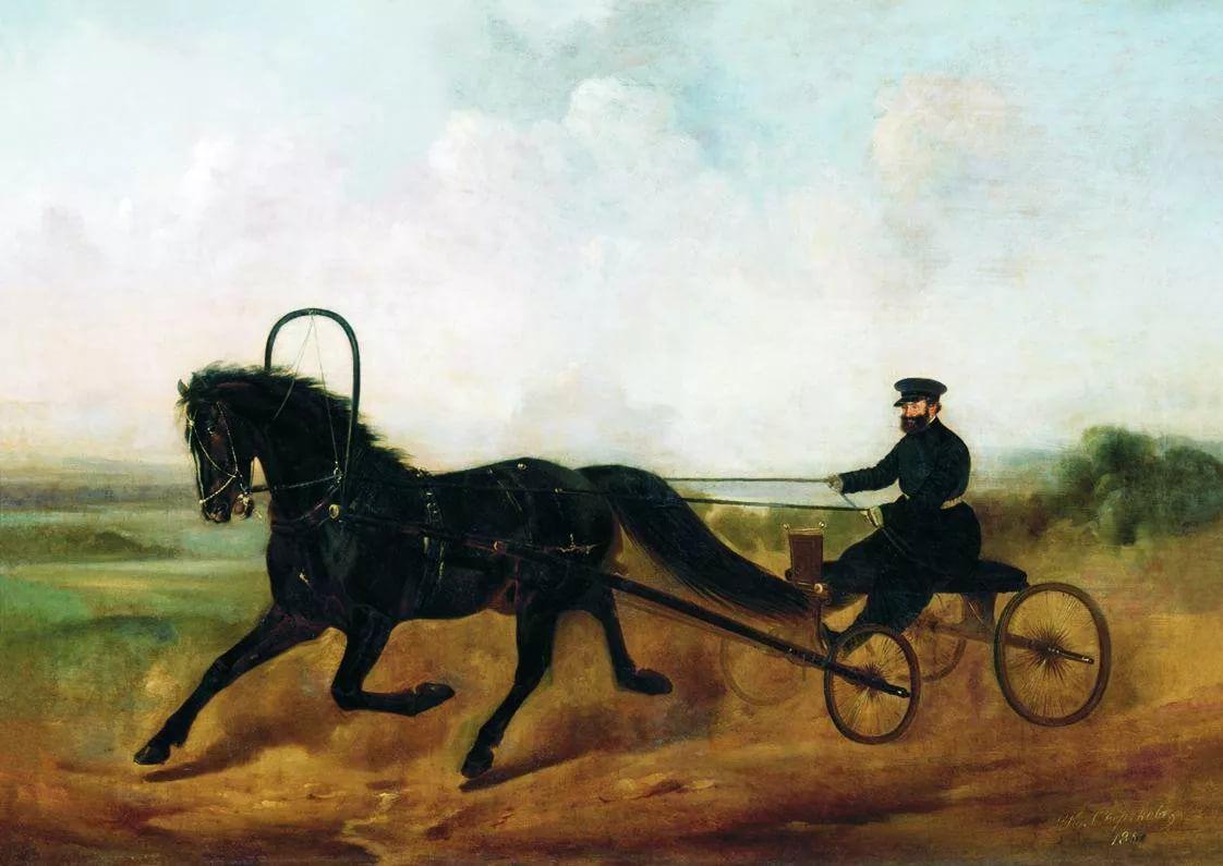 Картинки кучера на лошади