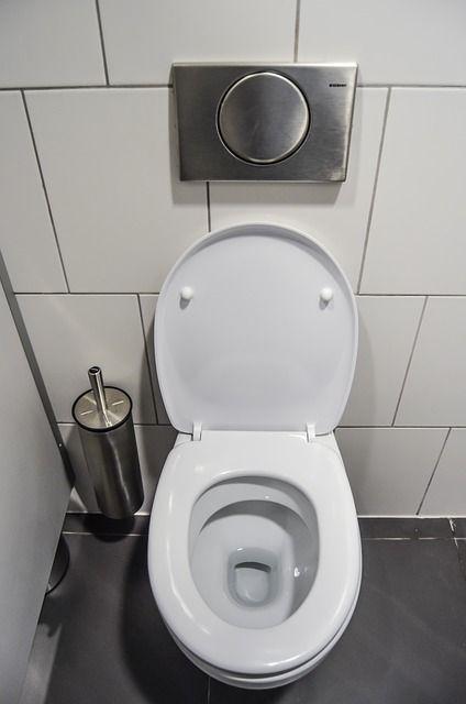 Free Image On Pixabay Wc Toilet Purely Public Toilet Small