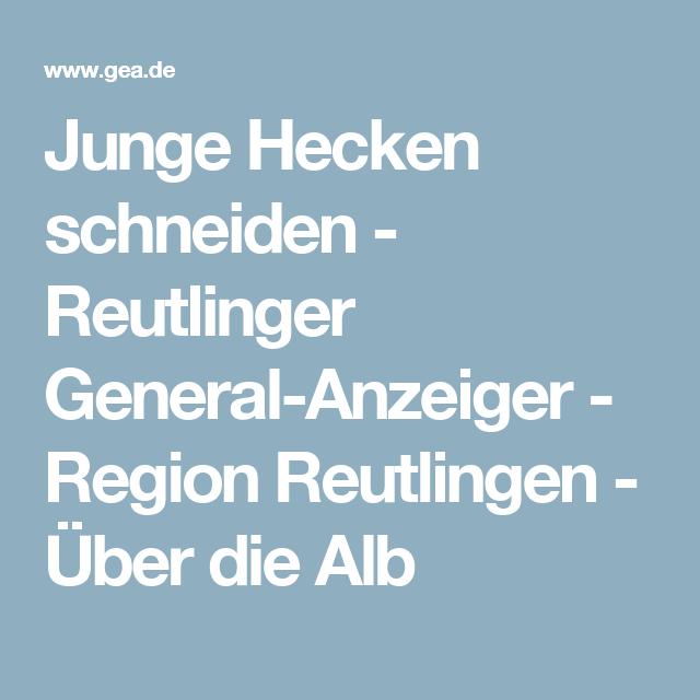 Vintage Junge Hecken schneiden Reutlinger General Anzeiger Region Reutlingen ber die Alb