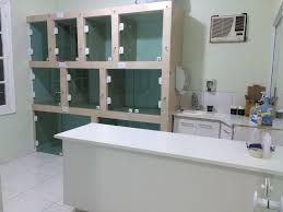 Imagen Relacionada Com Imagens Banho E Tosa Clinica