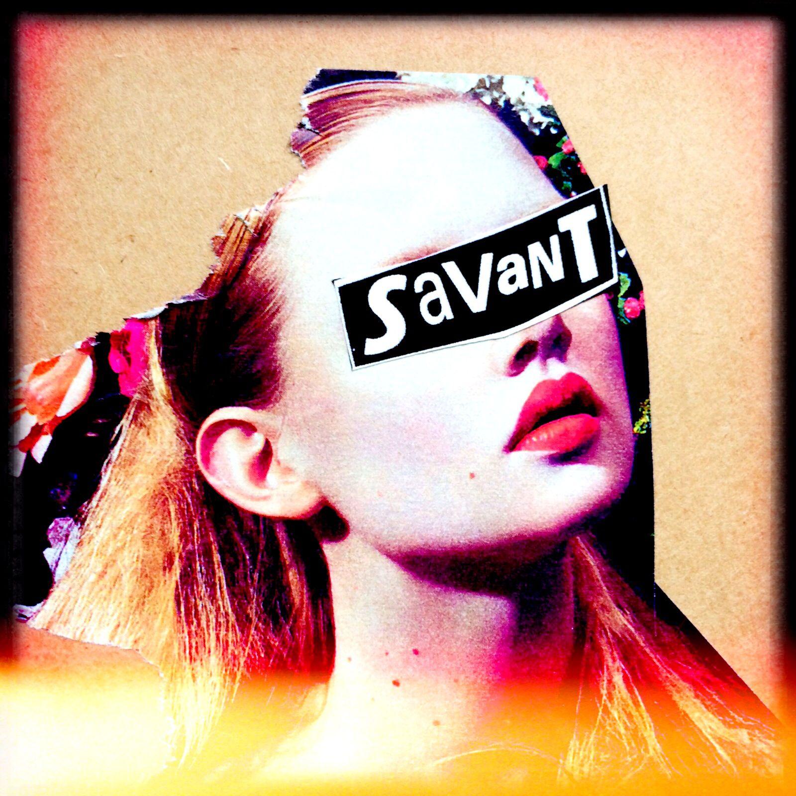 Savant collage