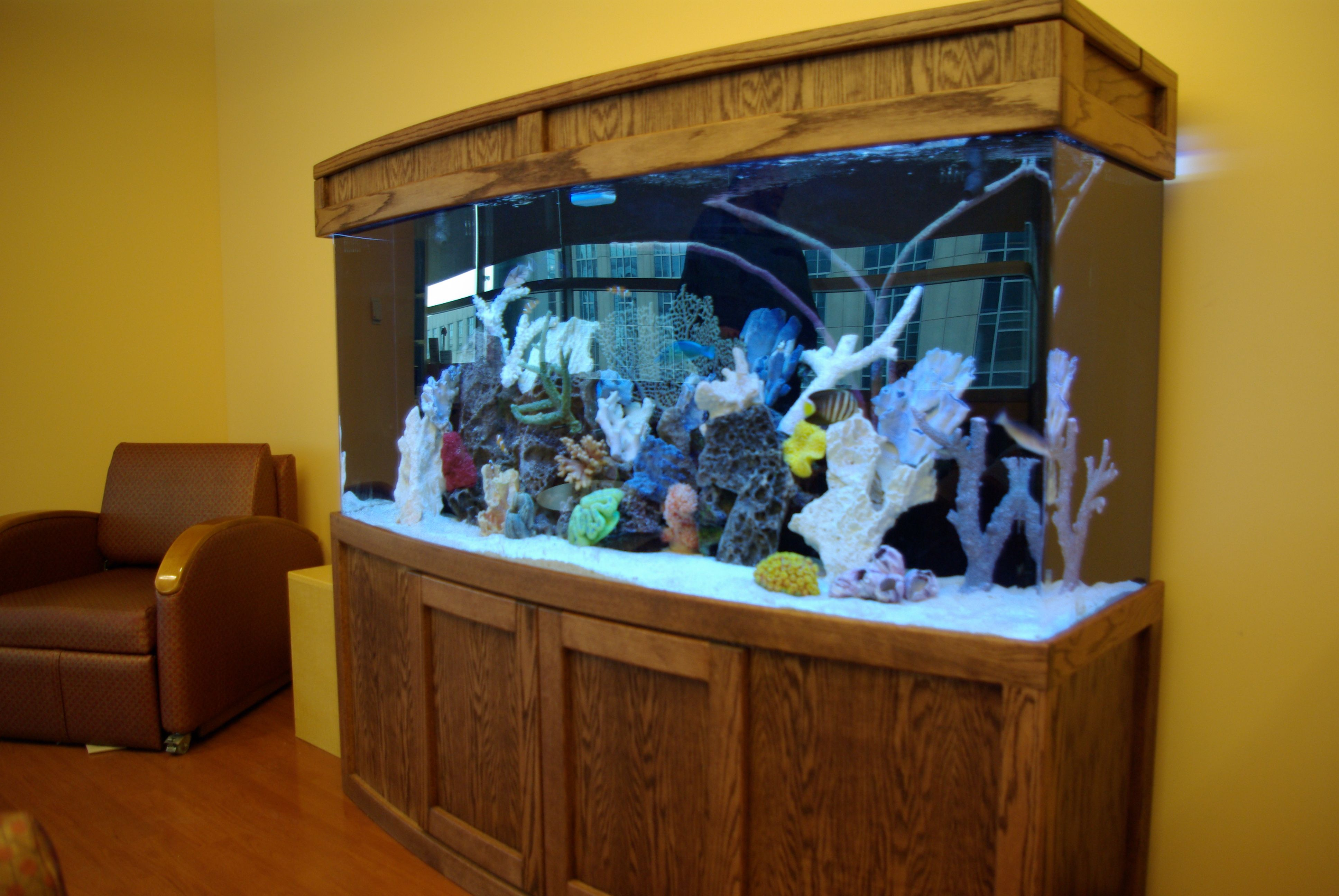 Custom saltwater aquarium and cabinetry from Blue Planet Aquarium