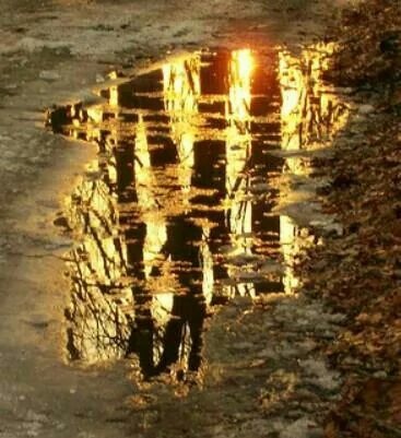 Sunset in Puddles by Shireen