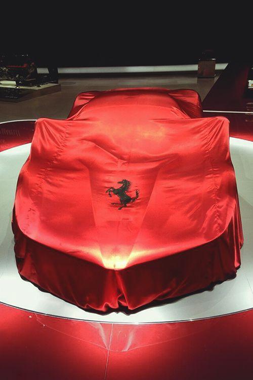 Ferrari Silk Car Cover The House Of Beccaria BILLIONAIRES BOYS - Show car cover