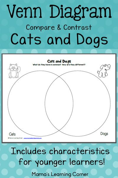 Cats and dogs venn diagram worksheet worksheets printables for contrast and compare cats dogs with this venn diagram for your young learner ccuart Choice Image