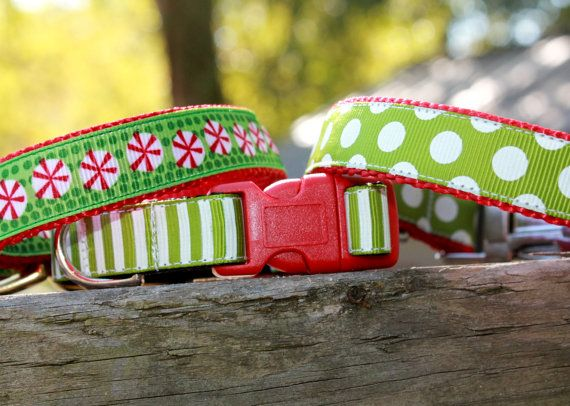Holiday Dog Collar/ Striped Dog Collar/ Christmas by MuttsnBones, $13.00